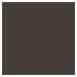 Logo Profoto Studios Resize